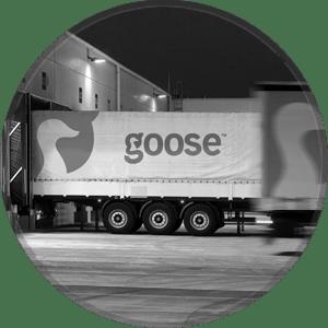 kontakt goose